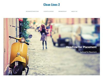 WebLink Website Clean lines 2 Theme